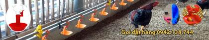 Chuyên cung cấp máng nước tự động cho gà chim cút